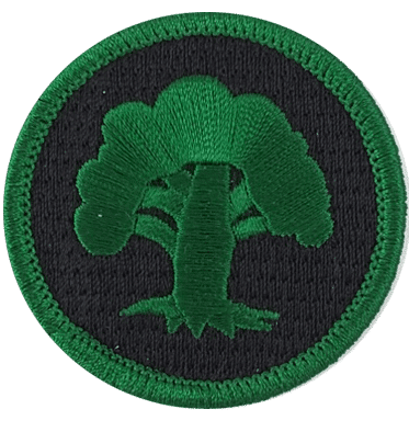 patch_Green